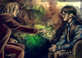 Dumbledores Will by airyfairyamy