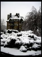 Snow Day: Haunted House by shuttermonkey