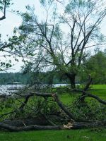 Storm Damage May 2009 06 by FlashBazbo56