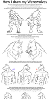 How I draw Werewolves by Carolzilla