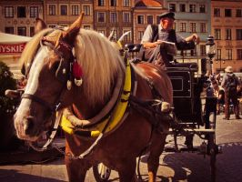 Horse drawn cab by Ajumska