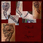 .:Skull and Spine:. by Silver-TailedHawk