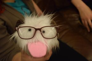 Hipster Poro by RaeGrey