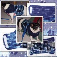 Dog Sweater for Maui by A--Anthony