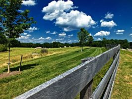 Fence and Fields II by znkf0908