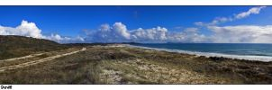 Puheke Reserve Dunes by carterr