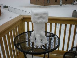 Snow Creeper by MJCa6oose