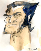 Watercolour Wolverine by WesleyRiot