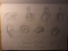 Hands 2 by lovesdrawing721