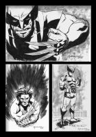 Wolverine 100 Sketches by scottygod