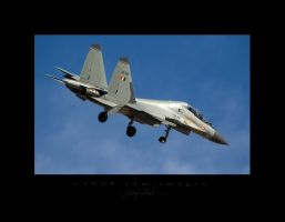 Red Flag SU-30MKI Base to Fina by jdmimages