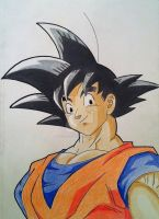 Goku(Normal) by RedDeadRAVAGE
