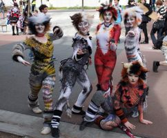 Jellicle Cats by HumanGuineapig94