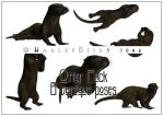Otter Pack by HarleyBliss
