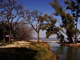 Paradise by Manwathiell-Stock
