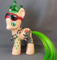 Deuce Gorgon Pony 1 by enchantress41580