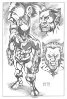 WOLVERINE by RenegadeMac