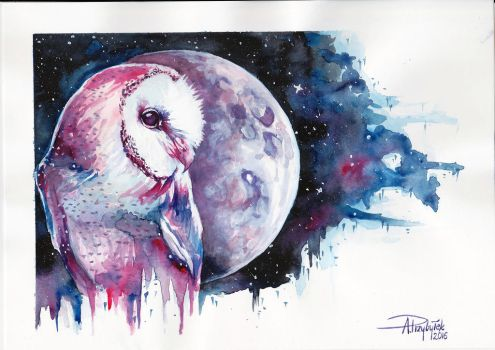 Barn Owl by AnnaP-Artwork