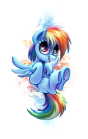 little Dashie by kaermter