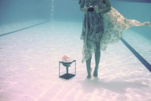 taking photos underwater by puddingpolaroid