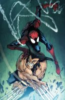 Gordototes Spidey VS Wolverine by dcjosh