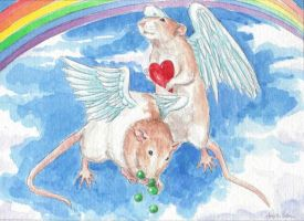 Joey and Harry rat angels by theillustratedrat