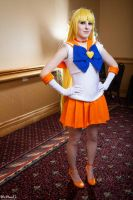 Sailor Venus stance by DarkFelicia