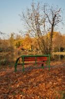 Park Bench by dardaniM
