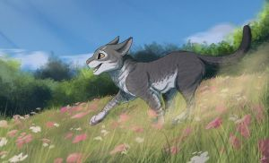 Commission   Through fields by OwlCoat