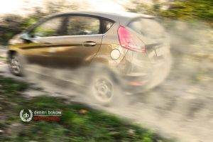 Ford Fiesta by DimitriBokowPhoto