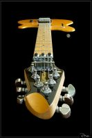 Peavey Wolfgang - EVH model by RemiGarciaPhoto