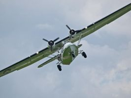 Catalina Close Up Sywell by davepphotographer