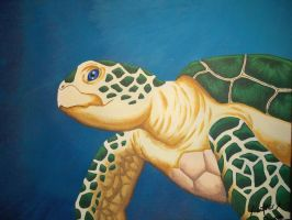 Green Sea Turtle by HDevers
