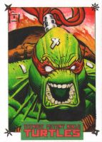 IDW Limited Sketch Cards Raphael 3 Final by jeffreyedwards