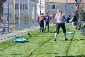 2014 Dog Festival, The Dog Sled Pull 4 by Miss-Tbones
