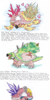 The history of Torterra by Uskall