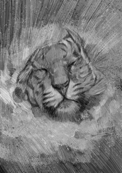 Tiger Bathing (motion sketch) by wallacedestiny