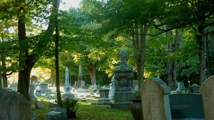 Forest Hill Cemetery 4 by GizmoJax