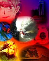 My collage (sp?) by KittyNinja2009