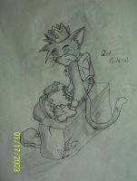 How cat sit? by LupetheKid