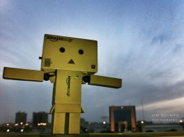 I'm the King of the World - Danbo by simplyjinz