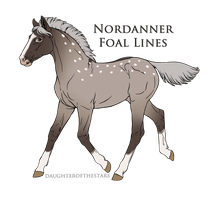 8033 Foal Design by Lucid-Dimensions