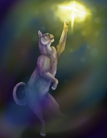Catching stars by sanr4
