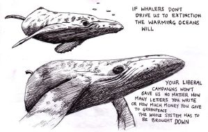 Whales by Nute