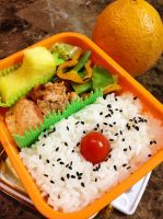 Pineapple Seared Salmon Bento by Demi-Plum