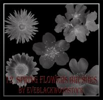 spring flowers brushes by EveBlackwoodStock