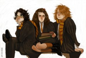 HP: The Golden Trio by iago-rotten