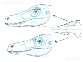 How (I think) deinonychosaur eye sockets work by Osmatar