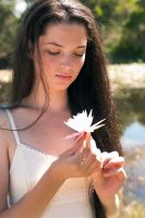 Rosie - waterlily revisted 1 by wildplaces