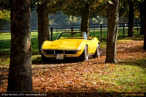 Corvette Autumn by AmericanMuscle